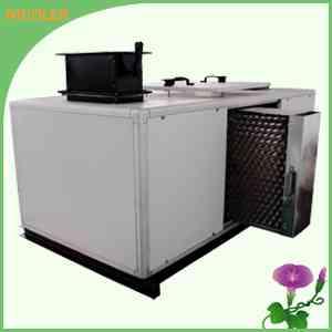 风柜式净化空调消毒杀菌设备